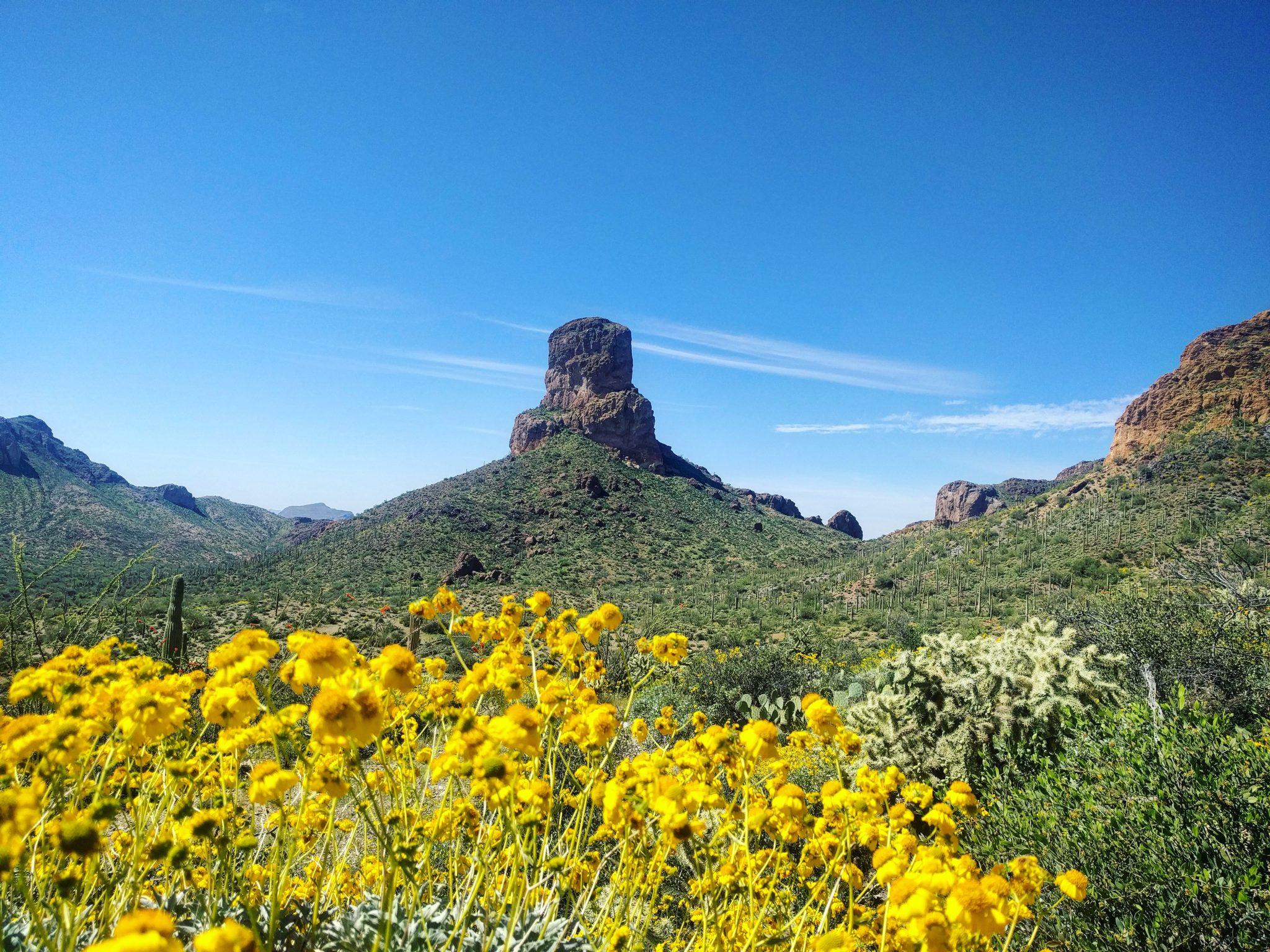 arizona-trail